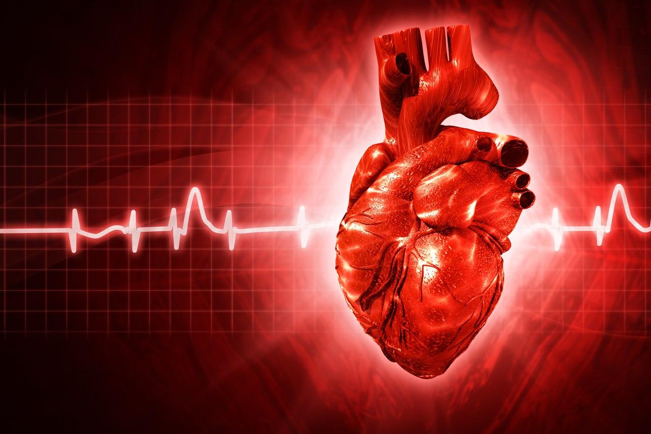 Угрожают ли вам заболевания сердечно-сосудистой системы?