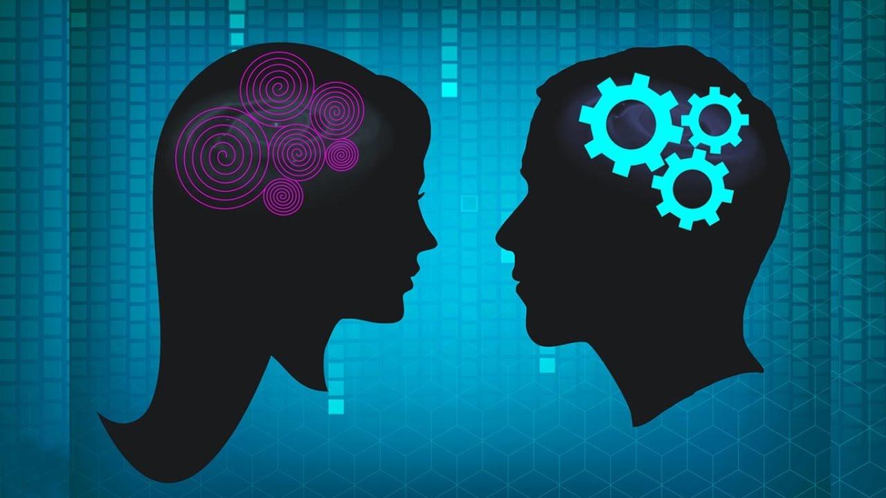 Ваш мозг – мальчик или девочка?